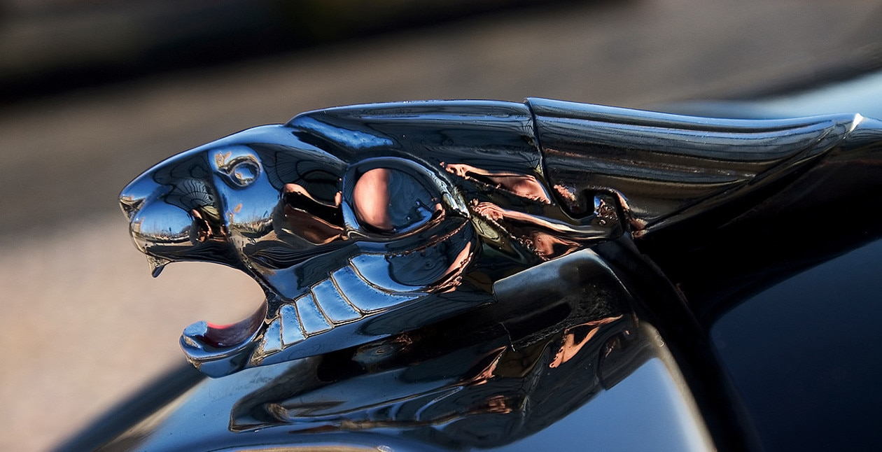 Universo Peugeot – Revive la historia de Peugeot