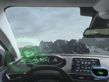 3008 Advanced Grip Control VR